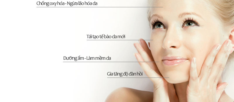 Công dụng Tế bào gốc Mesoestetic Stem Cell Serum RestructurActive